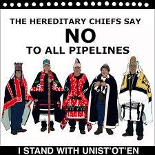 Solistatement von Tokata-LPSG RheinMain an die Aktivist*innen gegen die Coastal GasLine Pipeline in BC-Canada/Solidarity Statement to the Unist'ot'en People in their struggle against the Coastal GasLine Pipeline.